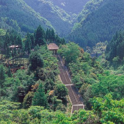 日本一の階段は 3333段 3キロの果てしなき 天国への階段 目標宣言です